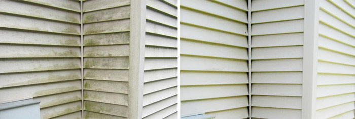 roof cleaner in grand rapids, mi cleans dirty vinyl siding with house washing and pressure washingservice