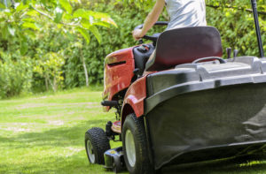 Spring Lawn Care Tips for a Great Looking Yard